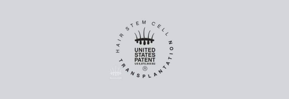 Hair stemcell patent us