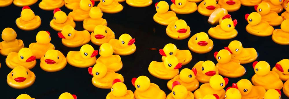 Hair Science Institute doet mee aan de Duckrace Maastricht