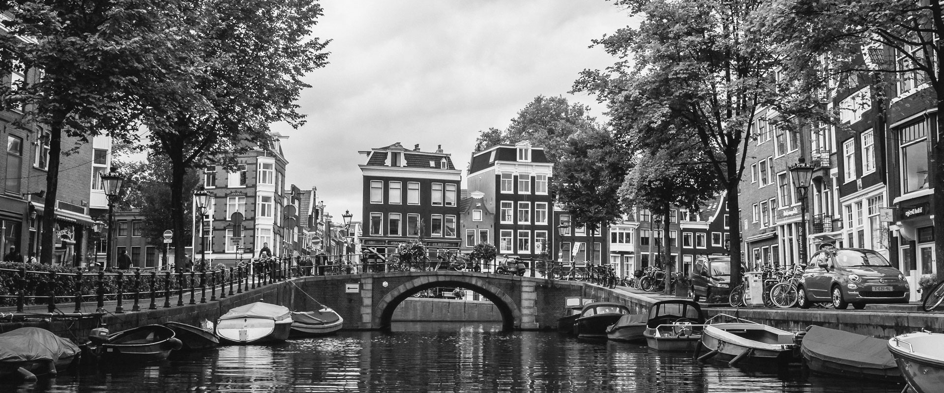 HaarStamcel Transplantatie Amsterdam